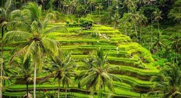 Anne et Nathalie, deux séjours à Bali à partir de 1700 € par personne