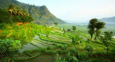 Bali : top 10 des choses à faire