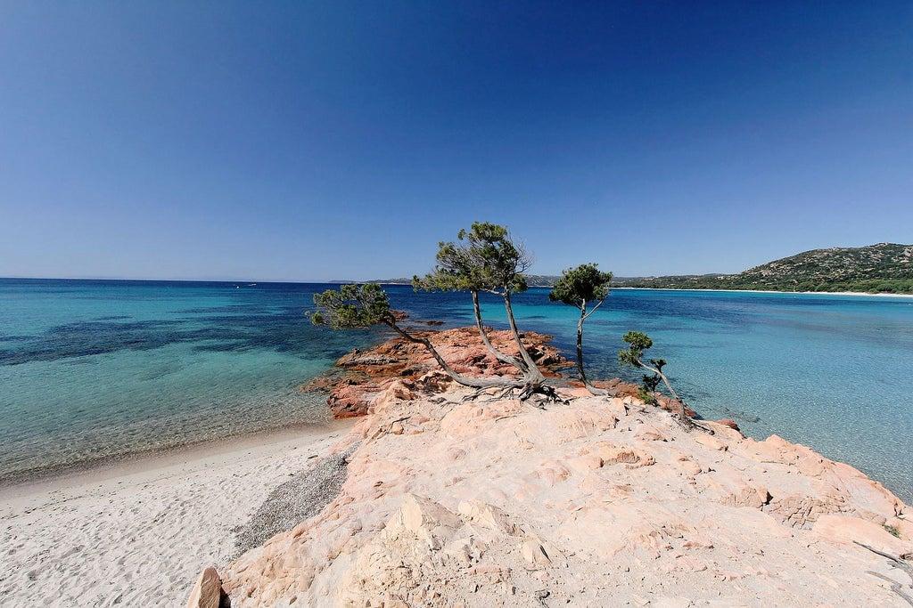 Plage de Palombaggia en Corse - blog GO Voyages