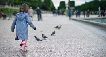 Que faire à Paris avec ses enfants ?