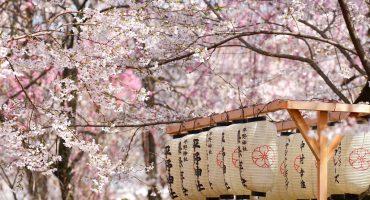 Les plus beaux festivals de mars