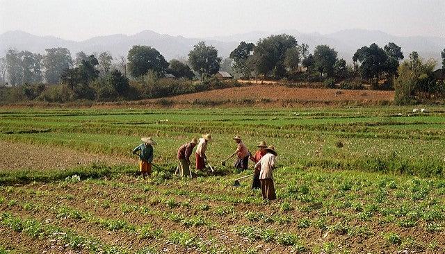 Hsipaw Birmanie