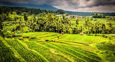 Bali et Lombok : top 10 des choses à faire