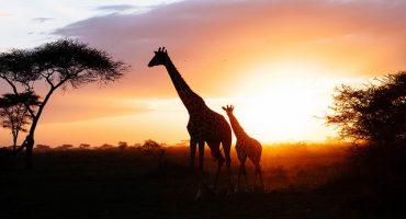 Les plus beaux couchers de soleil du monde