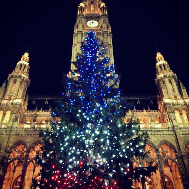 christmas tree wien