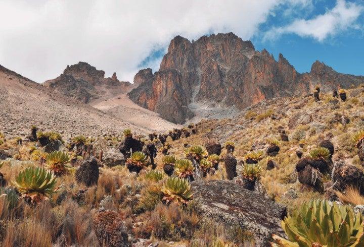 montagne kenya - blog GO Voyages