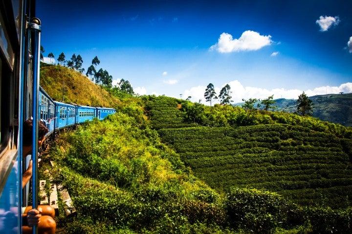 train bleu ella sri lanka - blog GO Voyages