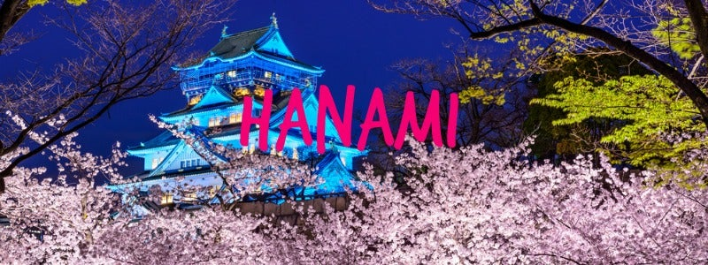 hanami au japon