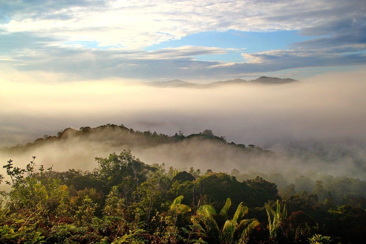 Malaisie - blog GO Voyages