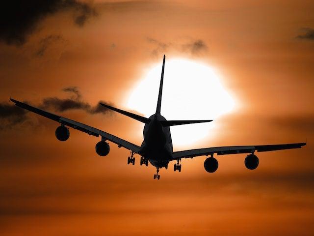 prendre-avion-animal-go-voyages-2