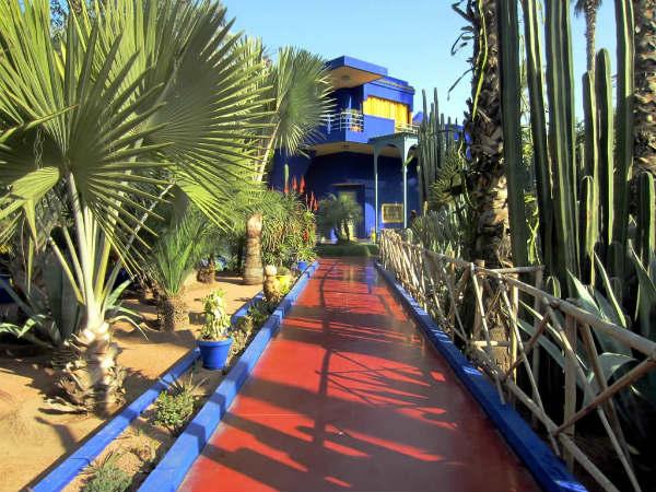 cactus villa bleu - blog go voyages