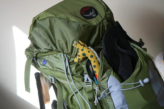 bagages go voyage