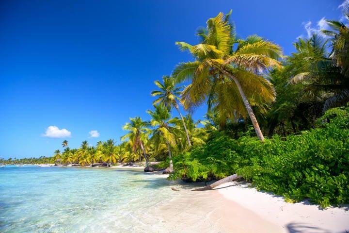 plage île paradisiaque de réoublique dominicaine - blog go voyages