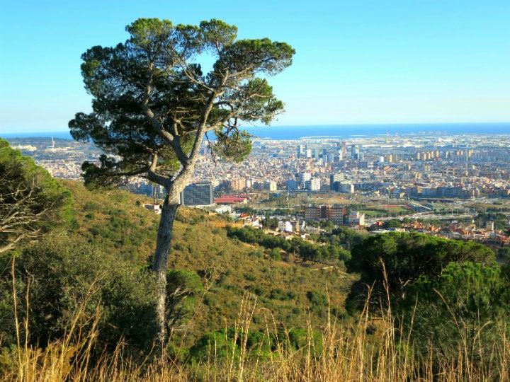 parc collserola vue Barcelone - blog GO Voyages