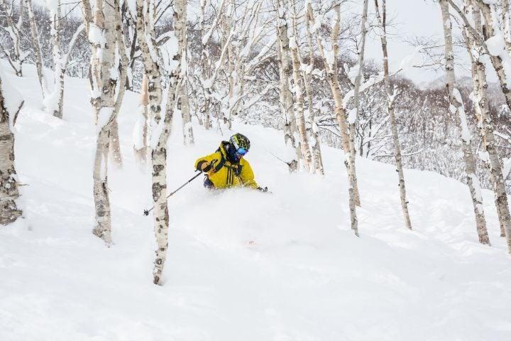 descente ski niseko japon govoyages
